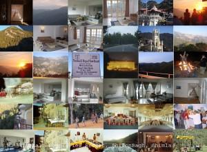 TRVR Collage