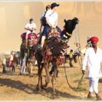 Camel Ride at Pushkar