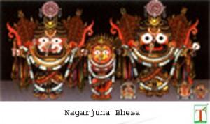 Nagarjuna Bhesa copy