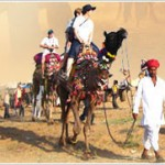 Camel Ride at Pushkar