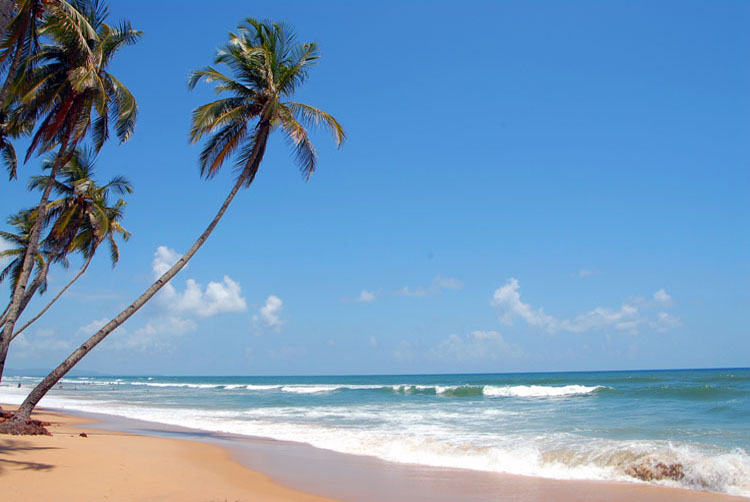 Goa Beaches: Best Place to Stay Away From All Worries